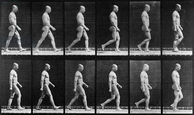 Man walking, from 'Animal Locomotion', 1887 (b/w photo)