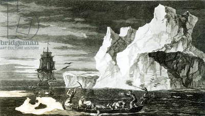 The Ice Islands on the 9th January 1773, engraved by B. T. Pouney, 31st Feb 1777 (engraving) (b/w photo)