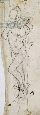 Study of St. Sebastian, 1480-81 (pen & ink over pencil on paper)