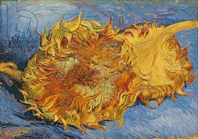 Sunflowers, 1887 (oil on canvas)