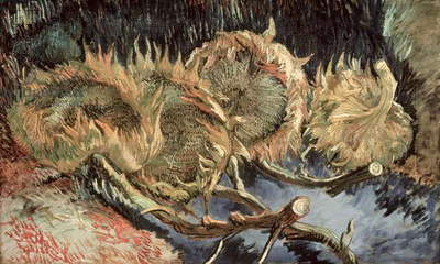 Four Withered Sunflowers, 1887 (oil on canvas)