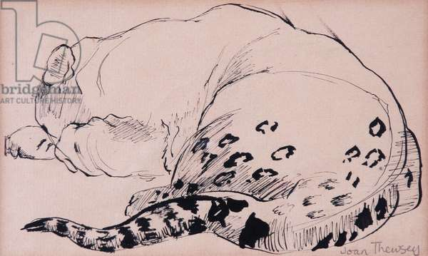 Sketch,Leopard,London Zoo 2005, (pen and ink)