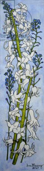 Hyacinths and Forget-me-nots,2012 (watercolour)