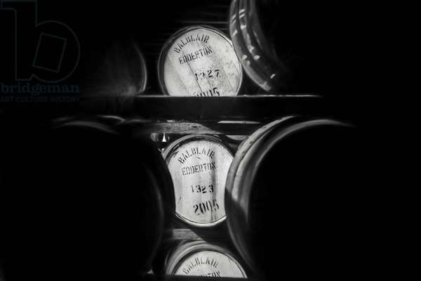 Barrels of whisky Part 1, 2017, (Direct Print on Brushed Aluminium, BUTLERFINISH® Look)