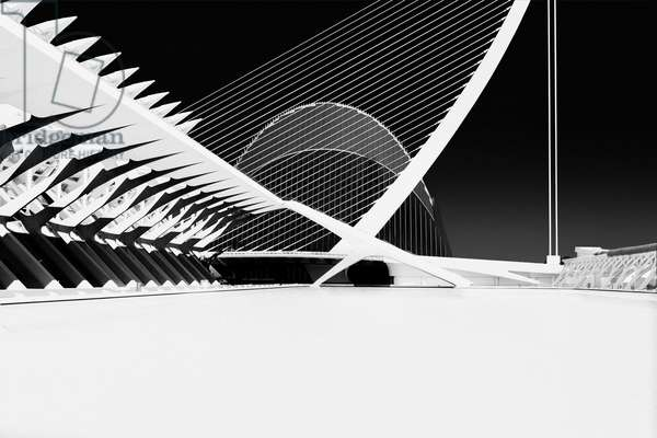 City of Arts and Sciences Part 2, 2016, (Direct Print on Brushed Aluminium, BUTLERFINISH® Look)