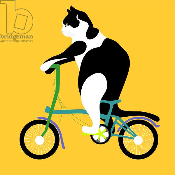 Cat on a Brompton Bike