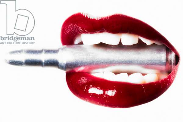 Bullet Lips, 2013, (Direct Print on Brushed Aluminium, BUTLERFINISH® Look)