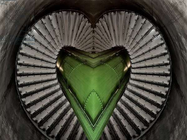 Spiral Heart, 2014 (digital image)