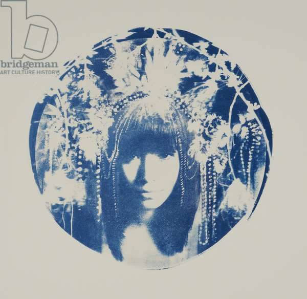 Dhama, 2014, (cyanotype on paper)