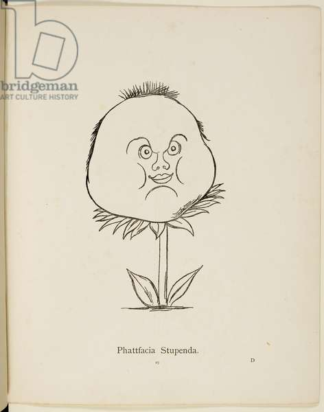 Fictional plant: 'Phattfacia Stupenda' . Illustrations from Nonsense Botany, and Nonsense Alphabets by Edward Lear.