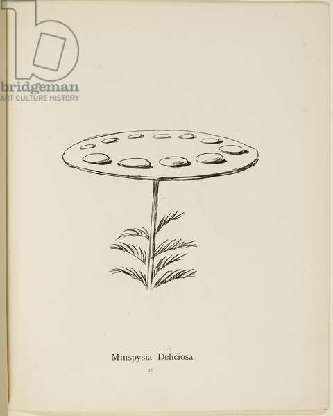 Fictional plant: 'Minspysia Deliciosa' . Illustrations from Nonsense Botany, and Nonsense Alphabets by Edward Lear.