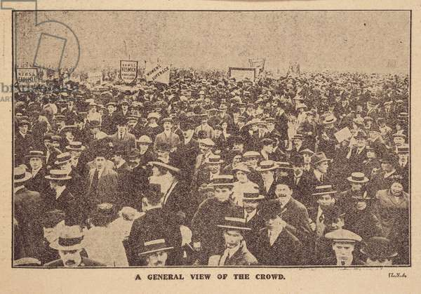 A general view of the crowd'.