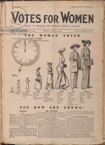 The woman voter'.