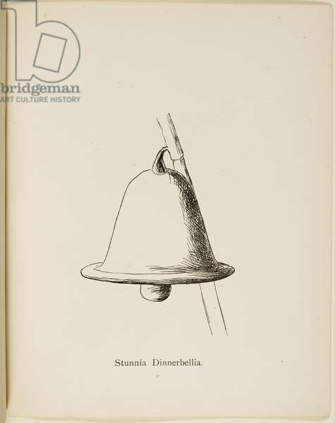 Fictional plant: 'Stunnia Dinnerbellia' . Illustrations from Nonsense Botany, and Nonsense Alphabets by Edward Lear.