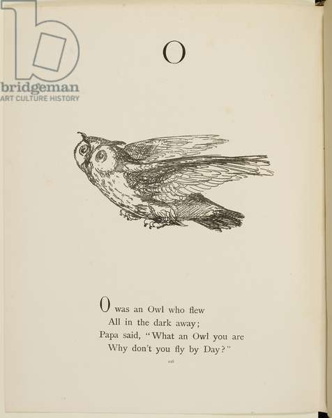 Owl Illustrations and verses from Nonsense Alphabets drawn and written by Edward Lear.
