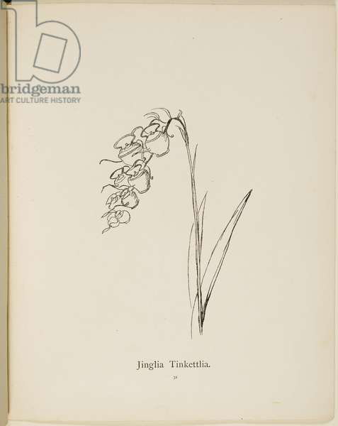 Fictional plant: 'Jinglia Tinkettlia' . Illustrations from Nonsense Botany, and Nonsense Alphabets by Edward Lear.