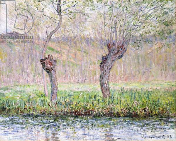 Spring, Willows, 1885 (oil on canvas)