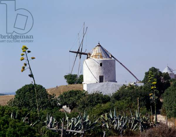 Windmill in Andalusia, Spain