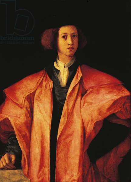 Portrait of young man, perhaps Amerigo Antinori, ca 1530, by Jacopo Carucci, known as Pontormo (1494-1557), oil on panel