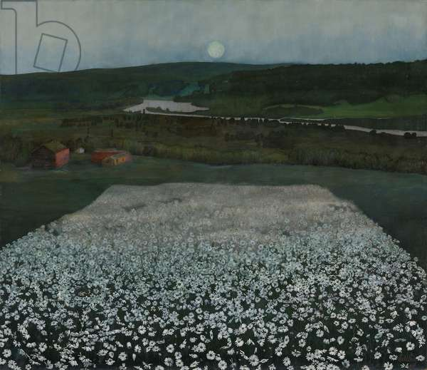 Field of Flowers in north, 1905, by Harald Oskar Sohlberg (1869-1935)
