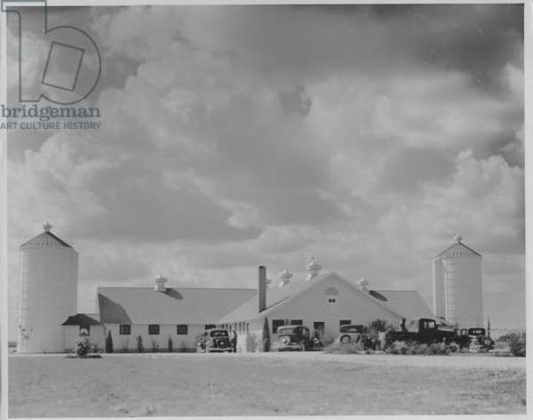 Model Dairy Farm near Austin, Texas, 1935-36 (b/w photo)