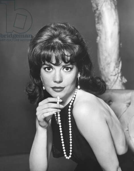 Natalie Wood IN THE 60'S (b/w photo)