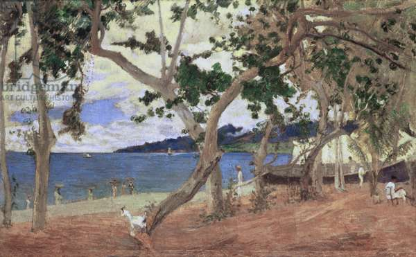By the Seashore, Martinique, 1887 (oil on canvas)