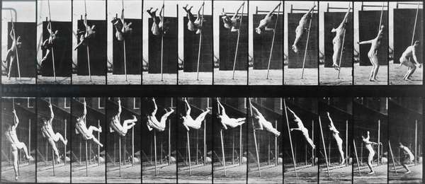 MUYBRIDGE: PHOTOGRAPHY Photographic study by Eadweard Muybridge, 1884