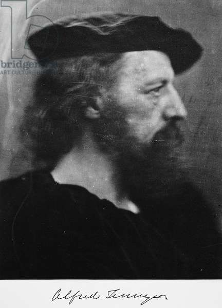 ALFRED TENNYSON (1809-1892) 1st Baron Tennyson. English poet. Photographed by Julia Margaret Cameron, 1866.