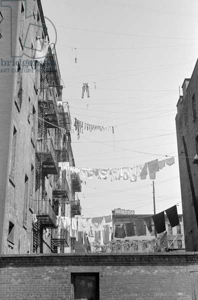 EVANS: NEW YORK, 1938 Clotheslines hung between apartment buildings on 61st Street, between 1st and 3rd Avenues in New York, New York. Photograph by Walker Evans, 1938.