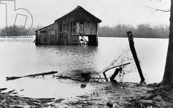 TENNESSEE: FLOOD, 1937 Farmyard covered with flood waters near Ridgeley, Tennessee. Photograph by Walker Evans in February 1937.