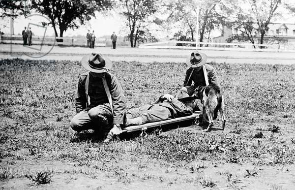 RED CROSS: STRETCHER American Red Cross workers carrying a man on a stretcher in Allentown, Pennsylvania. A Red Cross dog is shown at right. Photograph, c.1920.