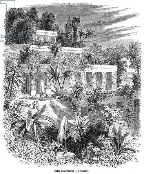 BABYLON: HANGING GARDENS Wood engraving of the ancient wonder, 19th century.