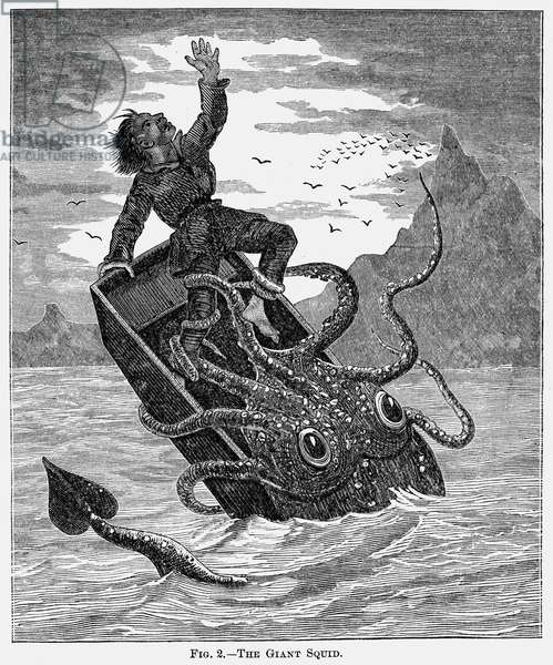 GIANT SQUID, 1879 Giant squid attacking a fisherman in his boat. Wood engraving, 1879.
