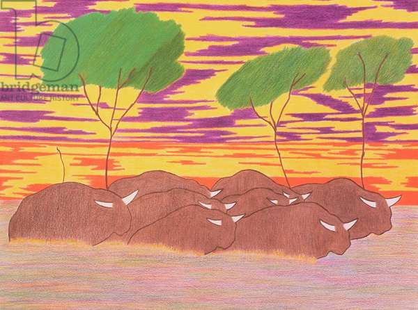 March of the Water Buffalo, 2004 (coloured pencil on paper)