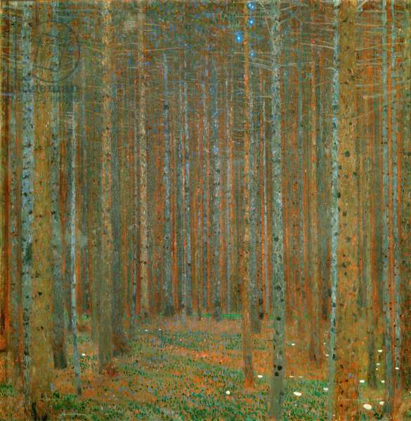 Fir Forest I, 1901 (oil on canvas)