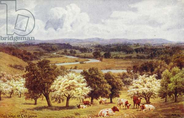The Vale of Evesham (colour litho)