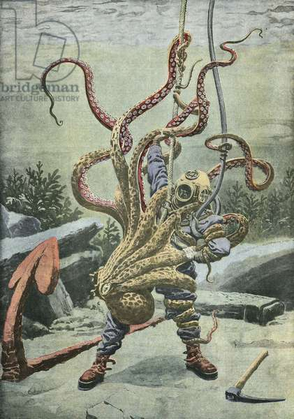 Diver attacked by an octopus