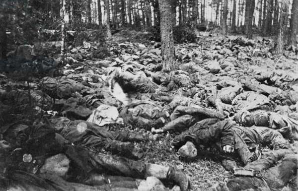 The impact of war seen in the hundreds of dead bodies lying in a wood after a mustard gas attack, Eastern Front, c.1916-17 (b/w photo)