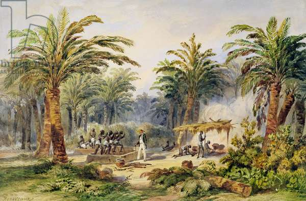 The Fabrication of Palm Oil at Whydah, West Coast of Africa, c.1845 (w/c on paper)