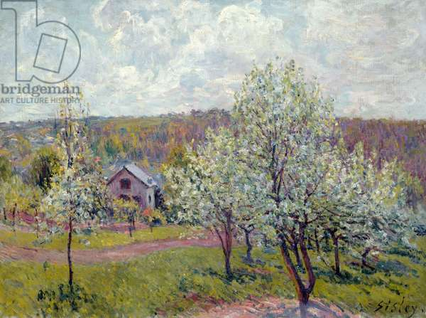 Spring in the Environs of Paris, Apple Blossom, 1879 (oil on canvas)