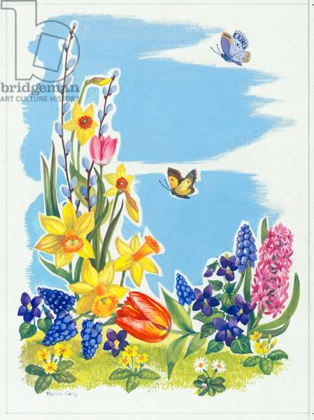Spring Flowers and Butterflies - daffodils, tulips, hyacinth