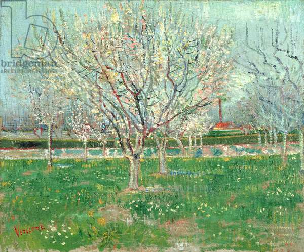 Orchard in Blossom, 1880 (oil on canvas)