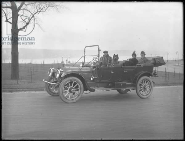 Three unidentified people and two Chow dogs driving in a convertible car along a river or lake, c.1912 (b/w photo)
