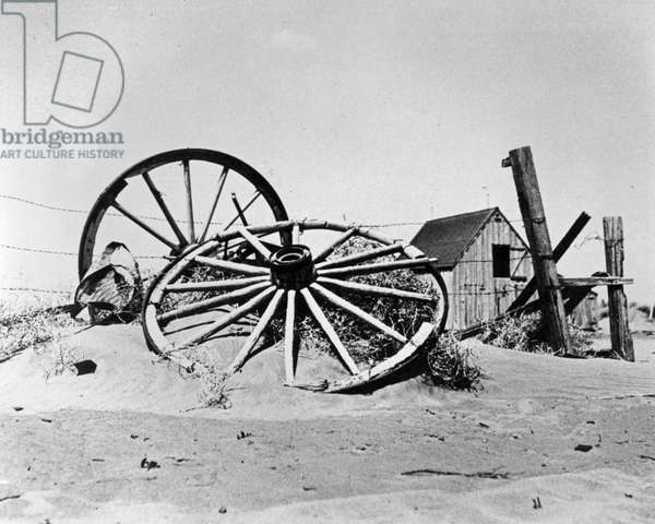 A Farm in Cimarron County, Oklahoma, during the Dust Bowl Period, 1936 (b/w photo)
