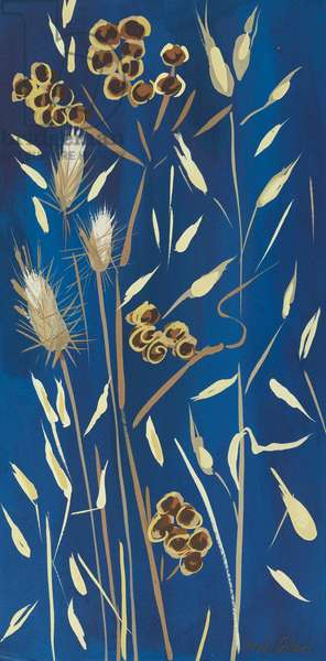 Seed Pods and Grasses, 2014, (gouache on paper)