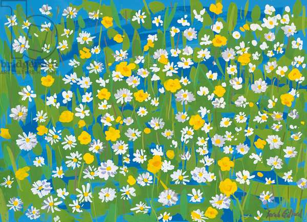 Buttercups and Daisies, 2009 (goauche on paper)