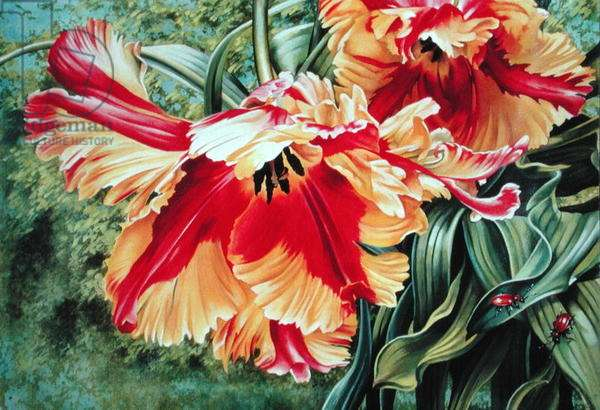 Parrot Tulips with Leaf Beetles, 1993 (gouache on paper)