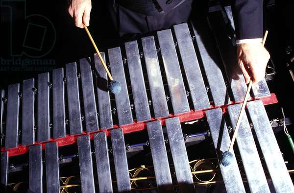 instruments - percussion -