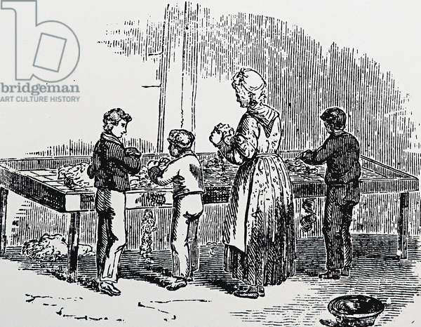 child labour 19th century The end of child labour in the 19th century in france (source wikipedia.